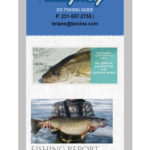 Walleye King Responsive Design