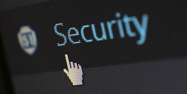 Securing Wordpress Websites